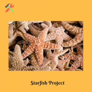 Starfish-Project